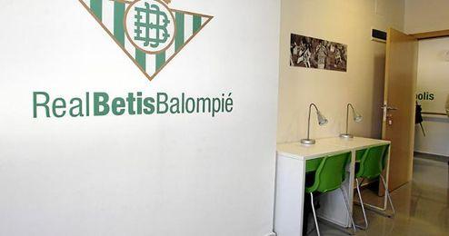 El Betis ha inaugurado hoy su nueva residencia.