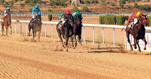 Imagen del sprint final de una de las carreras disputadas del Gran Hipódromo de Andalucía.