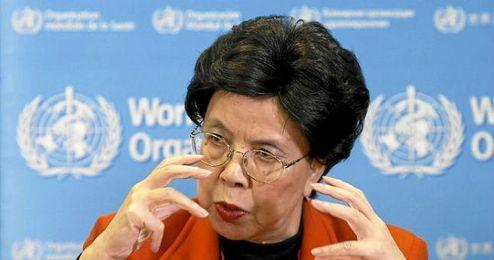 Margaret Chan, directora general de la OMS, estuvo recientemente abordando el tema con la presidenta de Brasil, Dilma Rousseff.