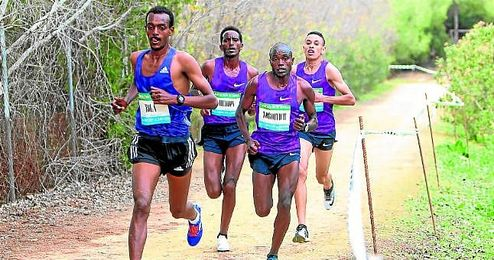 La RFEA ha distinguido a la carrera como el 2º mejor cross nacional del año.