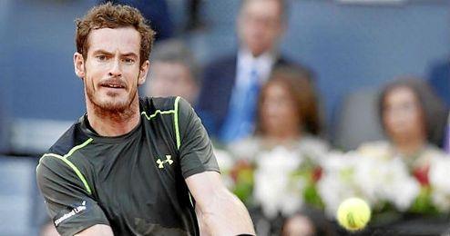 Murray, de menos a más.