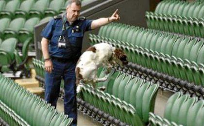 Un perro policía olfatea en busca de explosivos en las instalaciones de Wimbledon.