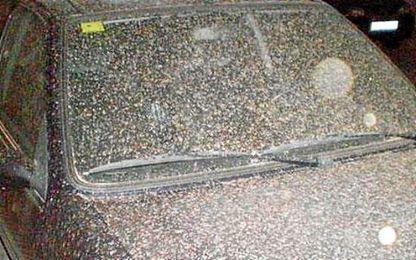 La lluvia de barro ensucia los coches de la capital hispalense.