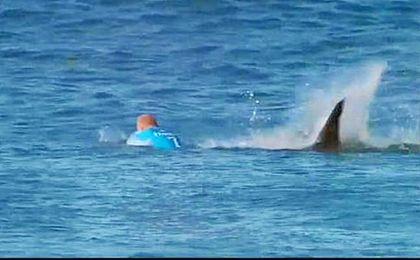 Muere un joven al ser atacado por un tiburón mientras practicaba bodyboard