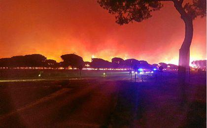 Imagen de la pasada madrugada del incendio en Moguer.