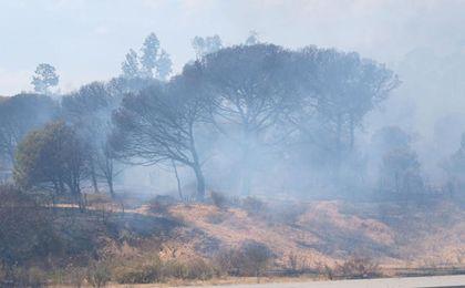 El área del Parque Natural se ha visto seriamente afectada.