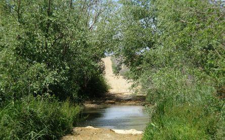 'Guillena de Ruta' recorre el Camino de Santiago