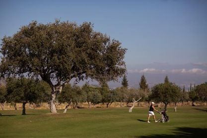 El golf, oasis en la pandemia, reclama su sitio