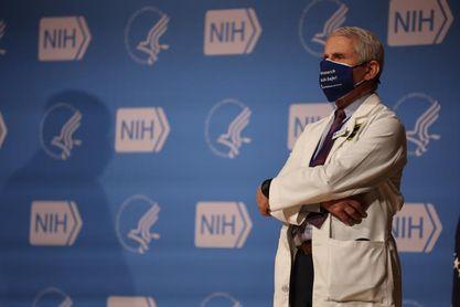 Doctor Fauci considera que podría darse la vuelta de aficionados al béisbol
