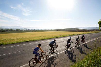 ¿Es necesario un carné de ciclista?, el debate de la discordia