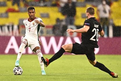 Dos posibles bajas en la defensa húngara para el partido contra Inglaterra