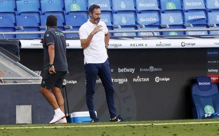 """Vicente Moreno: """"Cuando juega el Betis, son partidos bonitos para el espectador""""."""