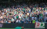 Los ocho cánticos del Real Betis - Espanyol que LaLiga ha denunciado